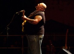 Wallpapers Music POPA CHUBBY