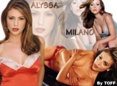Fonds d'écran Célébrités Femme ALYSSA MILANO