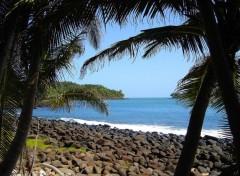 Fonds d'écran Nature vue sur l'île du Diable depuis la Royale (guyane - 07/2005)