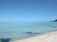 Fonds d'écran Nature A tahiti