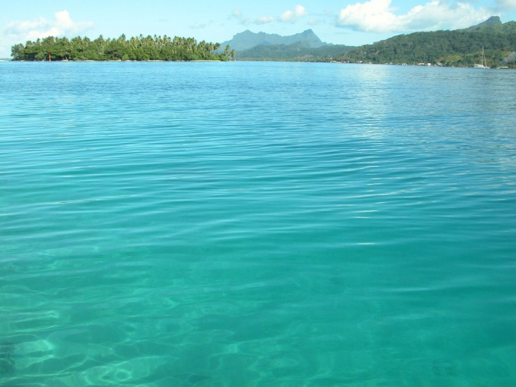 Fonds d'écran Voyages : Océanie Tahiti Wallpaper N°108779