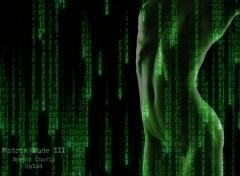 Fonds d'écran Erotic Art La matrice déshabillée III