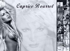 Fonds d'écran Célébrités Femme Caprice Bourret