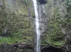 Fonds d'écran Nature cascade de takamaka