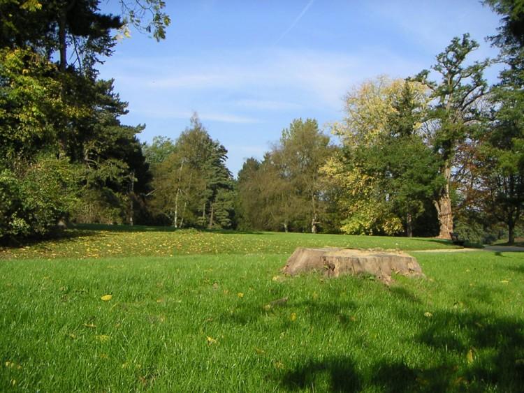 Fonds d 39 cran nature fonds d 39 cran parcs jardins parc de tervuren belgique par ares3 for Ecran de jardin belgique