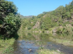 Fonds d'écran Voyages : Océanie En brousse, dans le massif de Koniambo