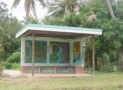 Wallpapers Trips : Oceania les abris-bus sur la côte est