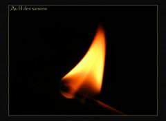 Fonds d'écran Nature Flamme d'allumette.