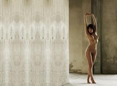 Fonds d'écran Erotic Art Belle et béton02