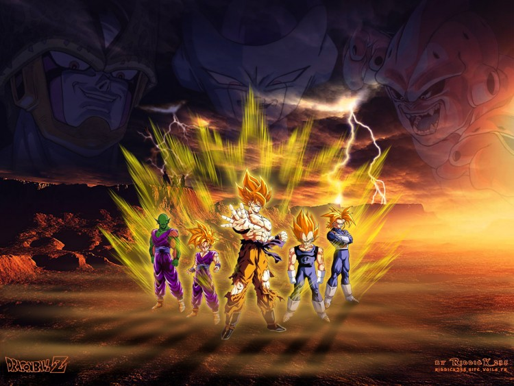Fonds d'écran Manga Dragon Ball Z Heros'n'Monsters v2.0