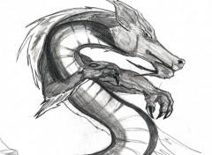 Fonds d'écran Art - Crayon Dragon