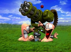 Wallpapers Video Games worms windows chaud devant