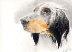 Fonds d'écran Art - Crayon Stan le chien