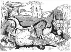 Wallpapers Art - Pencil naissance de dragons.