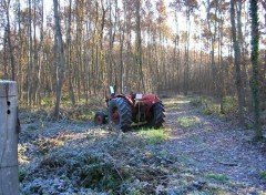 Fonds d'écran Transports divers Tracteur