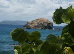 Wallpapers Trips : North America La Guadeloupe