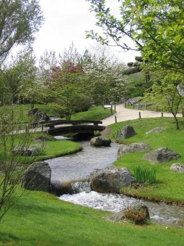 Fonds d 39 cran nature fonds d 39 cran parcs jardins jardin japonais de hasselt par ghislain for Ecran de jardin belgique