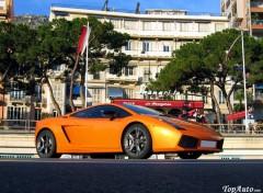 Fonds d'écran Voitures Lamborghini Gallardo SE - TopAuto
