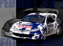 Wallpapers Cars 206 wrc 2