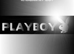 Fonds d'écran Grandes marques et publicité PLAYBOY N°3