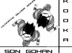 Fonds d'�cran Manga Ultimate Silver Gohan