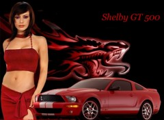 Wallpapers Cars milano+shelbygt500