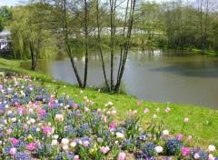 Fonds d'écran Nature Beauté de la nature