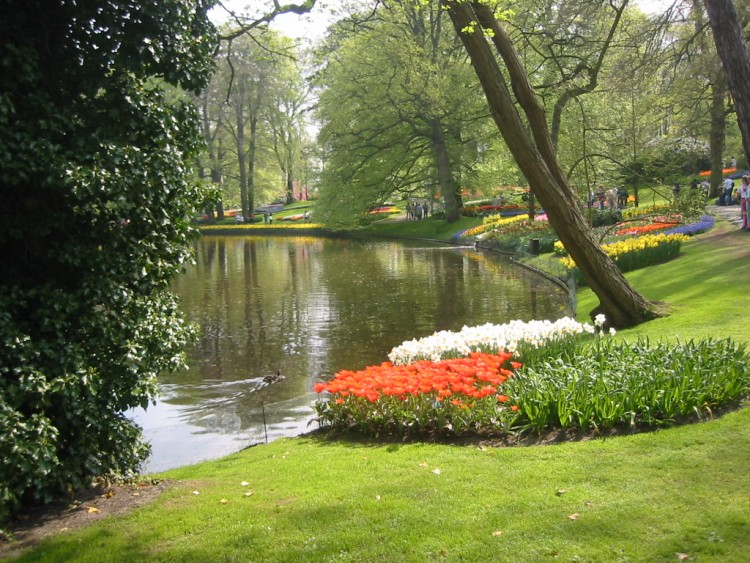 Fonds d 39 cran nature fonds d 39 cran parcs jardins parc for Jardin japonais fond d ecran
