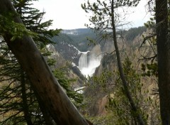 Fonds d'écran Nature Yellowstone