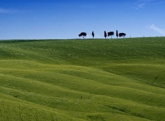 Fonds d'écran Voyages : Europe Toscana