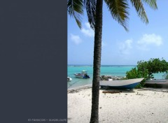 Fonds d'écran Voyages : Amérique du nord Plage St François - Guadeloupe
