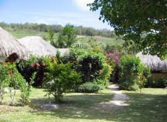 Wallpapers Nature Jardin à bora bora