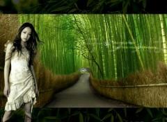 Fonds d'écran Célébrités Femme Japanese Bamboo Girl
