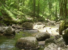 Fonds d'écran Nature rivierre du herisson - jura