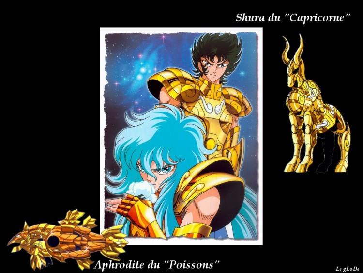 Fonds d'écran Manga Saint Seiya - Les Chevaliers du Zodiaque shura&aphrodite