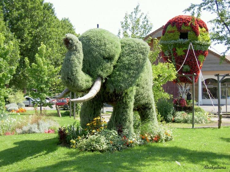 Fonds d'écran Nature > Fonds d'écran Parcs - Jardins ...