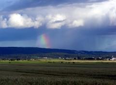 Fonds d'écran Nature un coin du ciel