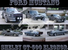 Fonds d'écran Voitures Ford Mustang Shelby GT-500 Eleonor