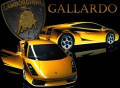Wallpapers Cars lamborghini gallardo