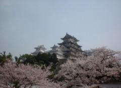 Fonds d'écran Voyages : Asie château Himeji