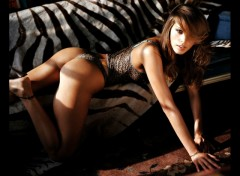 Fonds d'écran Célébrités Femme petra nemcova_14950