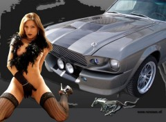 Fonds d'écran Erotic Art Hot Mustang
