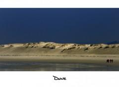 Fonds d'écran Voyages : Europe Dune