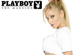 Wallpapers Brands - Advertising plaboy mansion