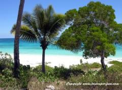 Fonds d'écran Voyages : Océanie Lifou - Nouvelle Calédonie