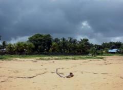 Wallpapers Trips : South America Plage de Guyane