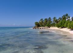 Wallpapers Nature La plage en république dominicaine
