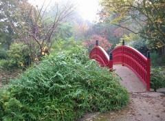 Fonds d'écran Nature Pont japonais