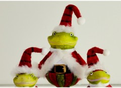 Fonds d'écran Objets Le Noel d'un Frog
