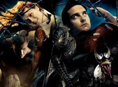 Fonds d'écran Cinéma Sandman & Venom